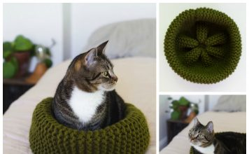 Cat Bed Free Knitting Pattern
