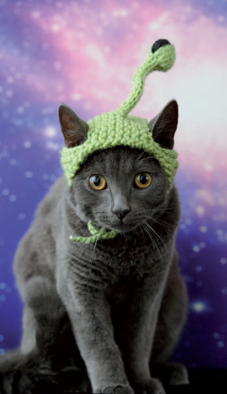 Alien Cat Hat Free Knitting Pattern