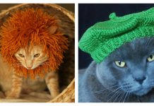Cute Cat Hat Free Knitting Pattern