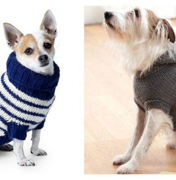 Dog Coat Free Knitting Pattern