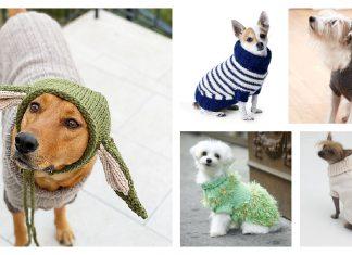 Dog Coat Free Knitting Pattern