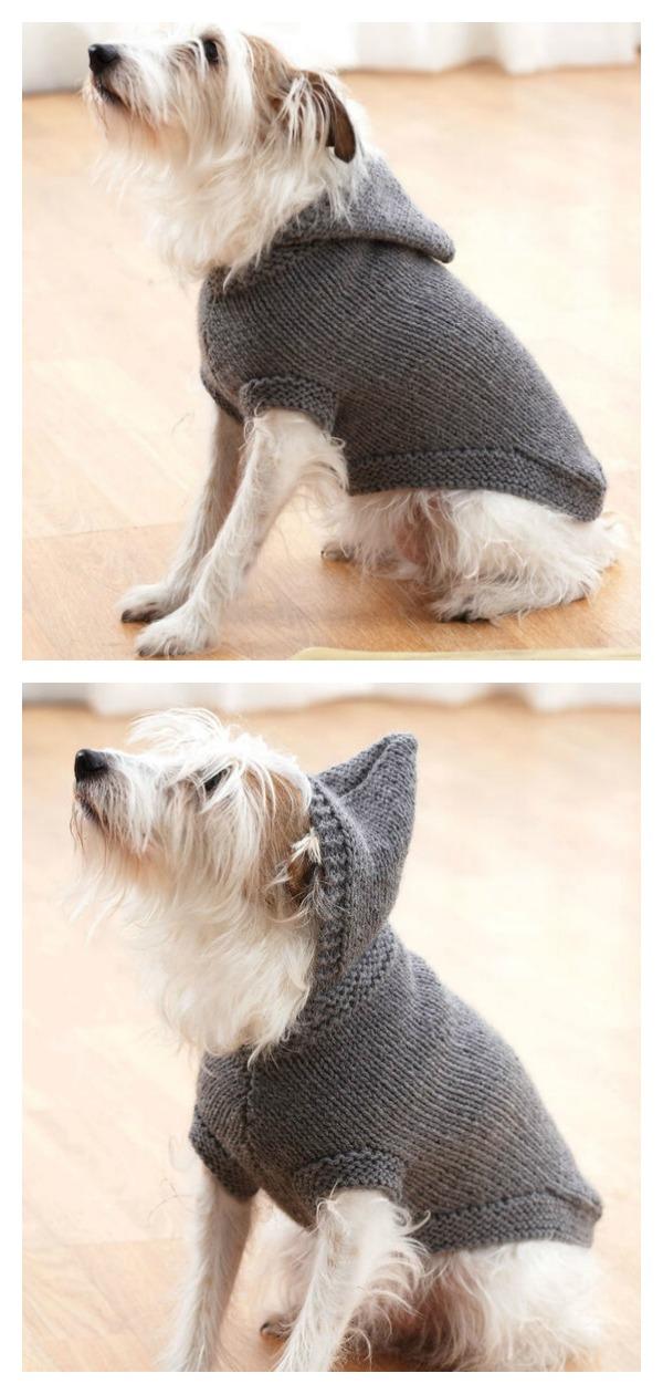 Hoodie Dog Coat Free Knitting Pattern