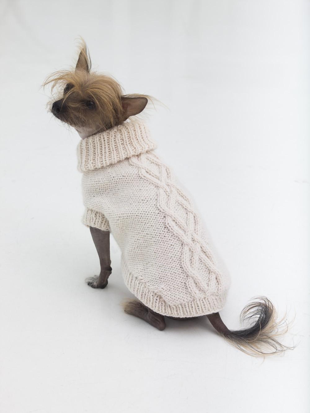 The Prep Dog Sweater Free Knitting Pattern