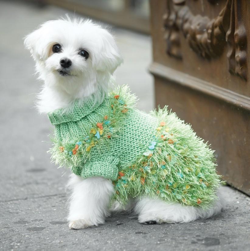 Turtleneck Dog Sweater Free Knitting Pattern