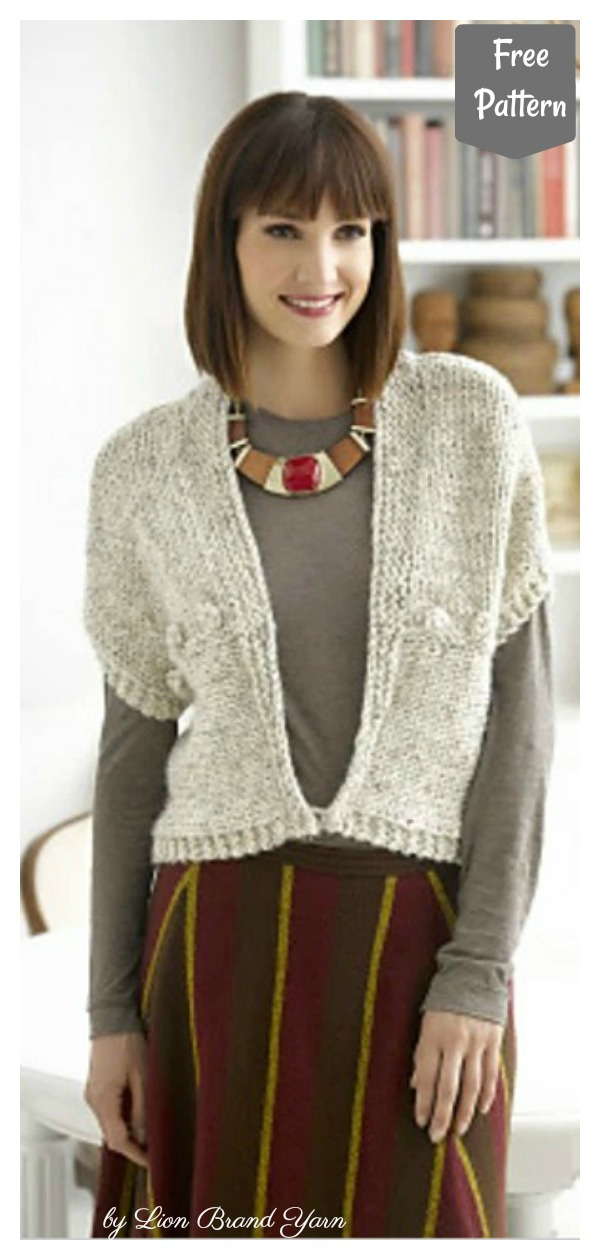 Simple Stylish Vest Free Knitting Pattern