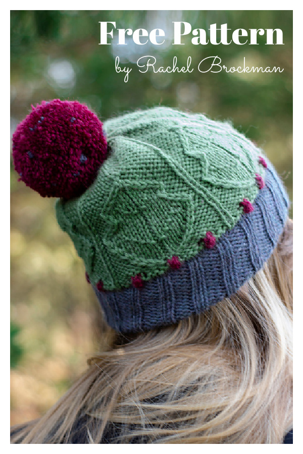Carolina Holly Christmas Hat Free Knitting Pattern