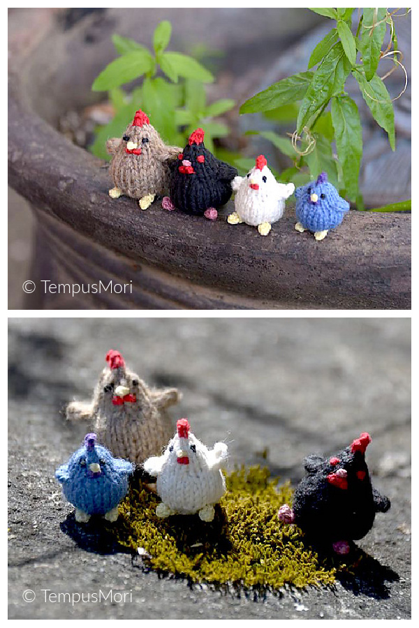 Tiny Chickens Free Knitting Pattern